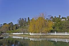 Parque das plantas do sul Imagem de Stock Royalty Free