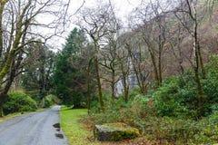 Parque de abadía de Kylemore Imagen de archivo libre de regalías