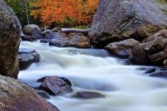Parque de Adirondack de la corriente Imagen de archivo