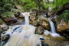 Parque de Altindere Vadisi Milli perto de Sumela Monastery em Turquia imagens de stock royalty free