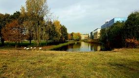 Parque de Amsterdam Imagen de archivo libre de regalías