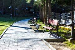 Parque de Borjomi foto de stock royalty free