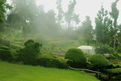 Parque de Chettiar com névoa no monte do kodaikanal fotos de stock royalty free