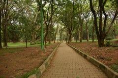 Parque de Cubbon del parque de Sri Chamarajendra, Bangalore, Karnataka foto de archivo