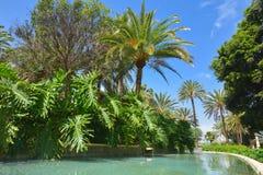 Parque de Doramas en Las Palmas de Gran Canaria, España fotos de archivo