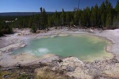 Parque de Emerald Springs Norris Geyser Basin Yellowstone Fotos de archivo libres de regalías