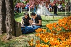 Parque de Emirgan en el fin de semana en Estambul, Turquía Foto de archivo libre de regalías
