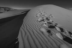 Parque de estado cor-de-rosa coral das dunas de areia Imagens de Stock Royalty Free