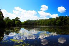 Parque de estado de Caleb Foto de Stock