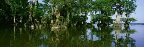 Parque de estado de Fausse Pointe do lago Fotografia de Stock Royalty Free