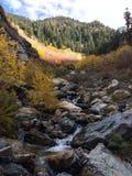 Parque de estado de la montaña de Wasatch foto de archivo