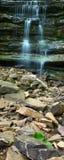 Parque de estado de Monte Sano - Alabama Imagem de Stock