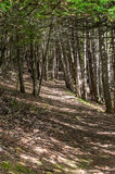 Parque de estado de Roche del Au del punto Foto de archivo libre de regalías