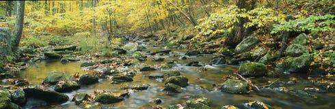Parque de estado del arroyo de Macedonia fotos de archivo libres de regalías