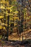 Parque de estado del condado de Brown Imagen de archivo libre de regalías