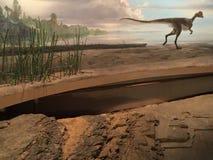 Parque de estado del dinosaurio y arboreto en Rocky Hill, Connecticut Fotografía de archivo libre de regalías