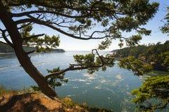 Parque de estado del paso del engaño, Washington foto de archivo libre de regalías