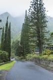 Parque de estado del valle de Iao en Maui Hawaii Imagen de archivo