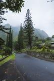 Parque de estado del valle de Iao en Maui Hawaii Imagenes de archivo