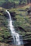 Parque de estado do vale dos Rickets Imagem de Stock Royalty Free