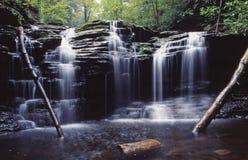 Parque de estado do vale dos Rickets, pa. Foto de Stock
