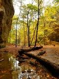 Parque de estado hambriento de la roca Foto de archivo libre de regalías