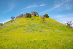 Parque de estado de la cala de Malibu en California imagenes de archivo