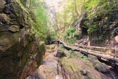 Parque de estado de la muesca de Franconia Imagen de archivo