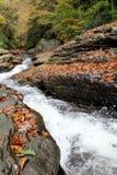 Parque de estado natural del ohiopyle de los waterslides, PA imagen de archivo