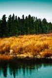 Parque de Estes, lago do CO Sprague Fotos de Stock Royalty Free
