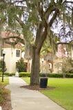 Parque de Gainesville, la Florida con el roble y el bote de basura Fotos de archivo libres de regalías