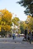 Parque de Gorky em Krasnodar Imagens de Stock