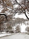 Parque de Greenwich en la nieve Fotos de archivo
