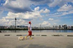 Parque de Hangang em Yeouido em Seoul, Coreia do Sul imagem de stock