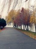 Parque de Herastrau em Bucareste, em um dia chuvoso Imagem de Stock