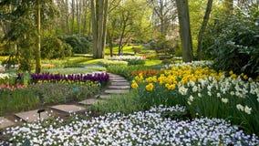 Parque de Holland imagens de stock