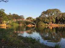 Parque de Ibirapuera Foto de Stock