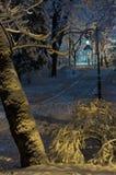 Parque de Ivan Franko do inverno da noite em Lviv, Ucrânia Fotografia de Stock Royalty Free