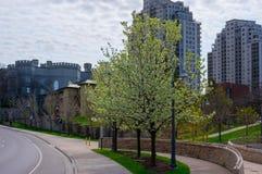 Parque de Ivey, Londres, Ontario fotografía de archivo