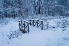 Parque de Izmailovsky, el puente en el bosque Imagen de archivo