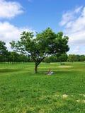 Parque de Japón Imagen de archivo