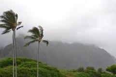 Parque de Kailua Fotografía de archivo