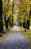 Parque de Karadjordjev Fotografía de archivo