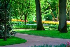 Parque de Keukenhof Foto de archivo