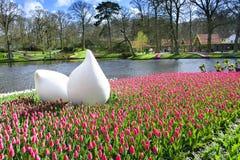 Parque de Keukenhof, los Países Bajos fotografía de archivo