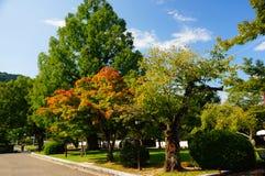 Parque de Kikko cerca del puente de Kintai Foto de archivo