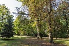 Parque de Kupelny en el balneario Sklene Teplice, Eslovaquia Imágenes de archivo libres de regalías