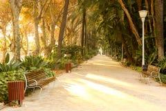 Parque de la阿拉米达马拉加西班牙Andalicia 免版税库存照片