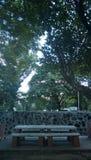 Parque de la última hora de la tarde imagen de archivo libre de regalías