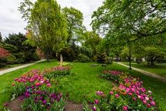 Parque de la academia al lado del edificio del capitolio en Albany, Nueva York fotografía de archivo libre de regalías
